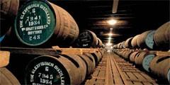 Шотландский завод предлагает туристам бесплатный виски-тур