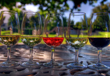 Вино помогает сбросить лишний вес