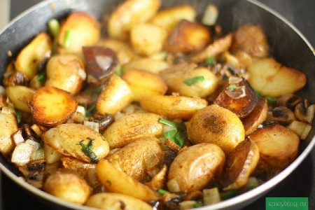 С какими грибами лучше жарить картошку