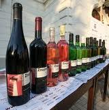 Южноморавская выставка вин проходит в Брно