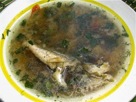 Рыбная юшка из днестровских окуней