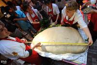 Гигантский кубанский вареник попал в книгу рекордов России