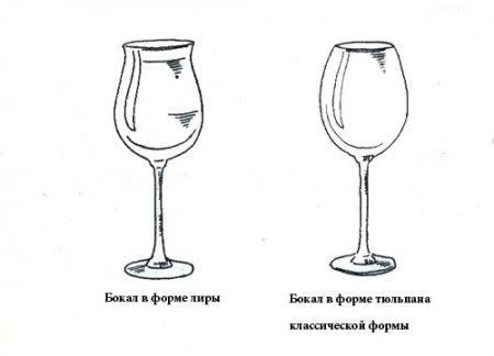 Вино и посуда. Подбираем бокалы для напитков