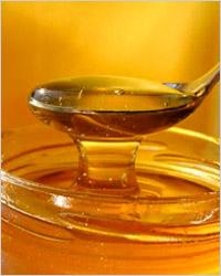 Блюда из мёда. Сладкая жизнь