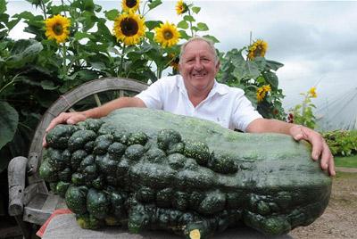 Британский пенсионер вырастил кабачок размером с бегемотика