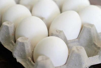 Британские ученые доказали, что место хранения яиц не имеет никакого значения