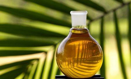 Противники пальмового масла – пособники Запада?