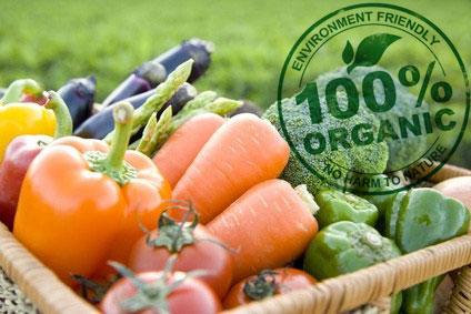 Чем полезны органические продукты?
