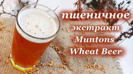 Домашнее пшеничное пиво, экстракт - Muntons Wheat Beer на неохмеленке