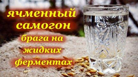 Ячменный самогон, тест жидких ферментов