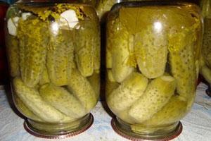 Засолка огурцов на зиму в литровых банках