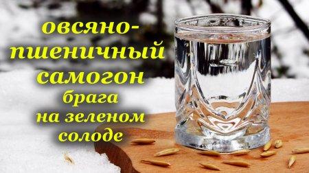 Овсяно-пшеничный самогон, осахаривание зеленым солодом, алкогольный напиток