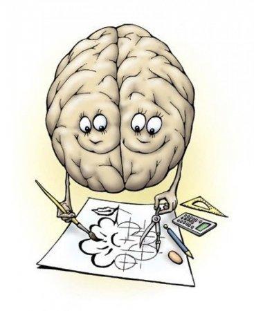 Ученые назвали самые полезные продукты для мозга