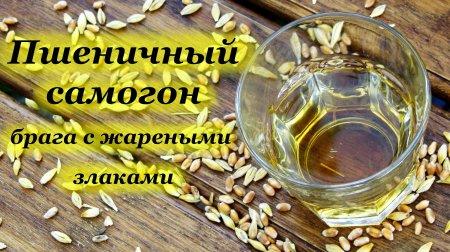 Пшеничный самогон, брага с жареными злаками