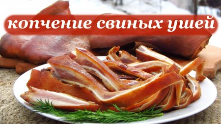 Рецепт копчения свиных ушей. Пивная закуска