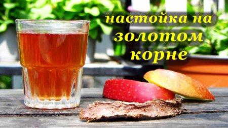 Рецепт настойки на золотом корне (родиола розовая)