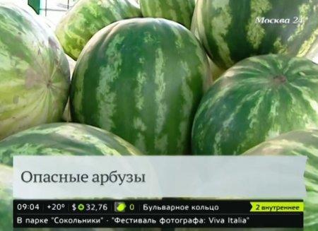 В Москве открылся сезон арбузов