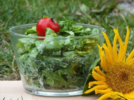 Простой салат из зелени