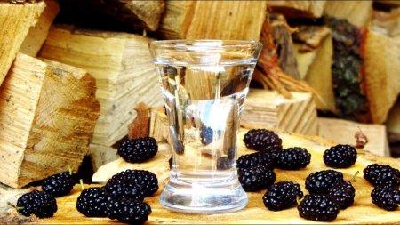 Рецепт самогона из шелковицы
