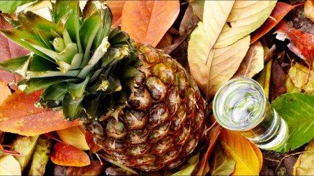Самогон из ананасового сока